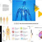 Plantillas de PowerPoint sobre Anatomía